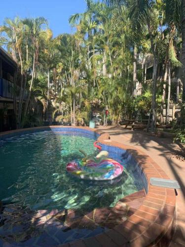 The swimming pool at or close to Frogs-Hollow Backpackers
