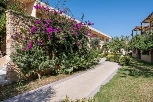 A garden outside Indigo Mare