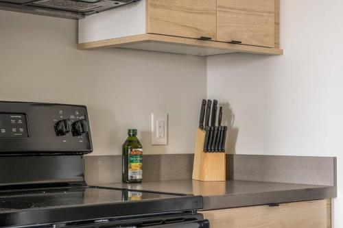 A kitchen or kitchenette at Lovely and Bright Studio Apt in Capitol View South