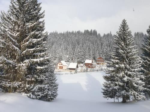 Apartment Durmitor during the winter