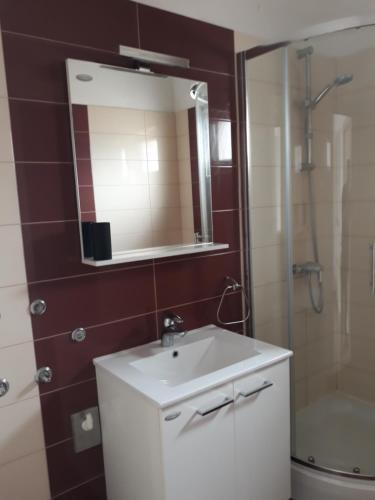 A bathroom at Apartmani Zoran