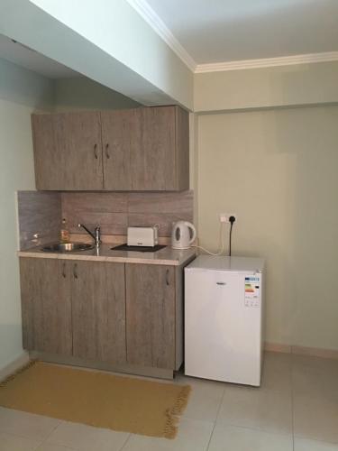 Virtuvė arba virtuvėlė apgyvendinimo įstaigoje Livadia studio