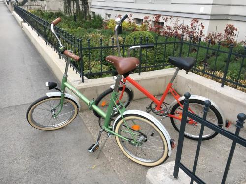 Jazda na bicykli v okolí ubytovania Šafranová záhrada