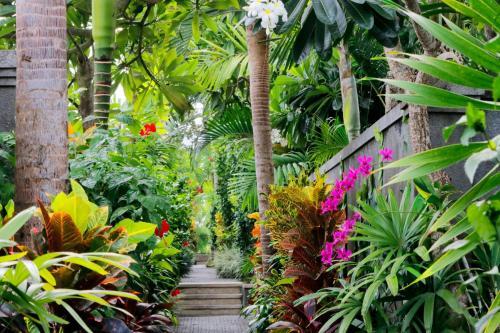 A garden outside Aradhana Villas by Ekosistem