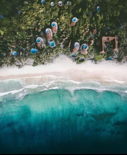 Vue panoramique sur l'établissement Papaya Playa Project