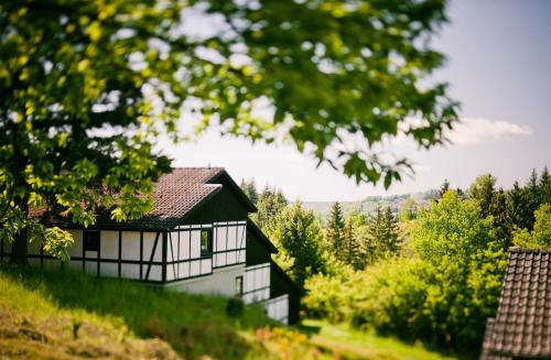 Ferienhaus Ahorn 1 - [#127703]