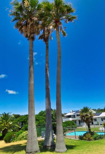 Pukenui Lodge Motel & Backpackers