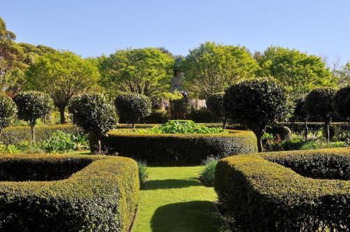 A garden outside Tree Elle Retreat