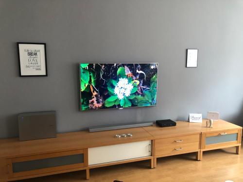 Televízia a/alebo spoločenská miestnosť v ubytovaní Apartmán Vodná 4