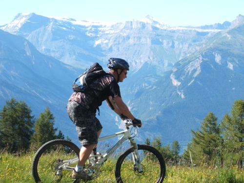 Biking at or in the surroundings of Residence Ski Heaven