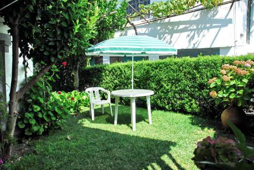 A garden outside Casa do Limoeiro 1