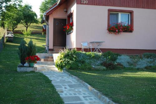 A garden outside Aniel Privat