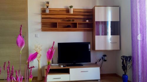 TV a/nebo společenská místnost v ubytování Sara Apartments