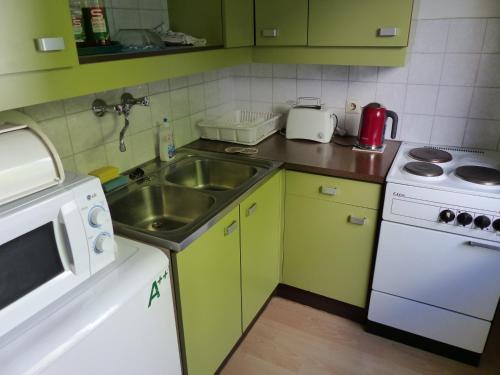 Küche/Küchenzeile in der Unterkunft Apartment Danhauser