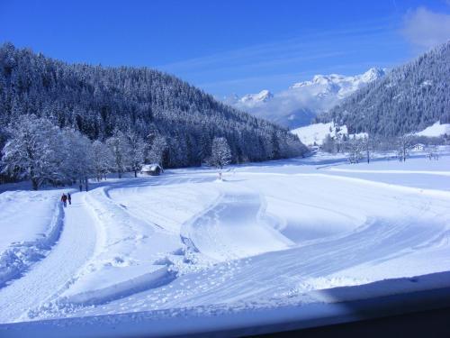 Haus Rosenegg בחורף