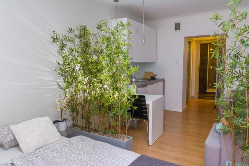 Hol lub recepcja w obiekcie Modern Apartments
