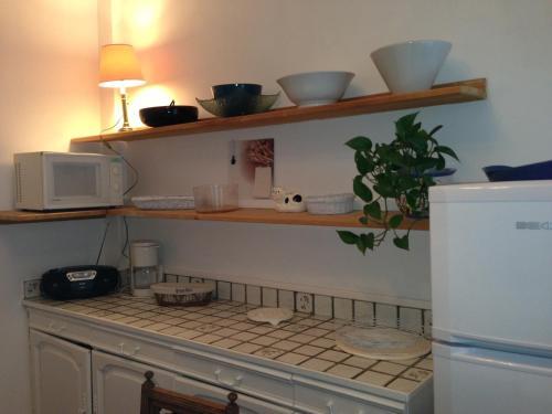 Cuisine ou kitchenette dans l'établissement Appartement la Sirène