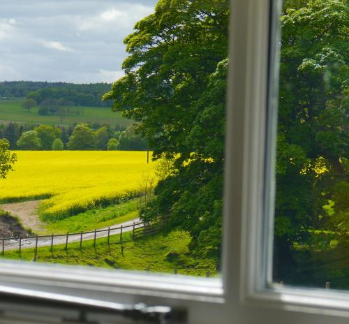 A view of the garden at Brooksides Byre Durham Country Cottage or nearby