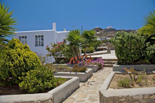 A garden outside Evagelia's Place