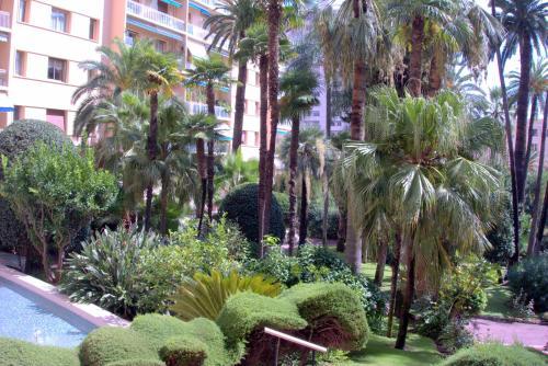 Jardin de l'établissement Monte Carlo Enjoy