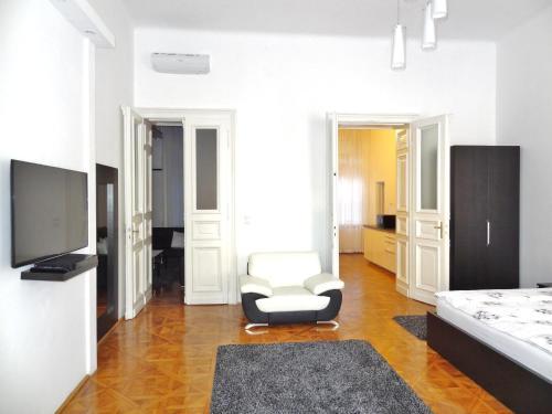 Televízia a/alebo spoločenská miestnosť v ubytovaní Erzsebet Boulevard Apartment