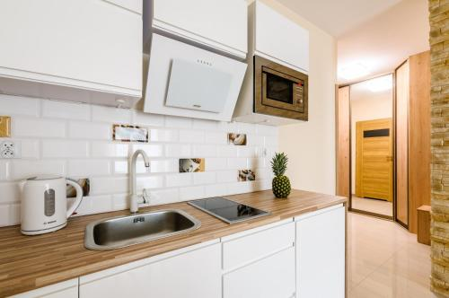 A kitchen or kitchenette at Apartment Wola4Mi