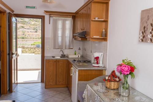 Majoituspaikan Stefanos Studios keittiö tai keittotila