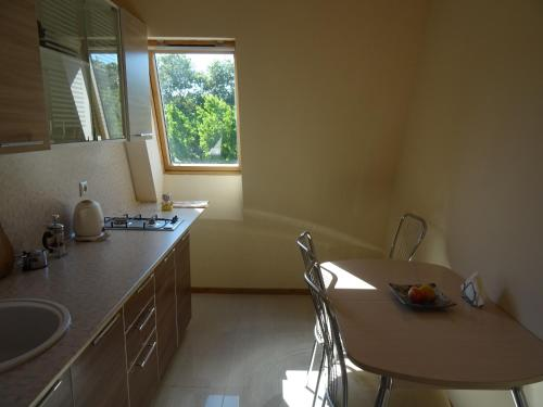 A kitchen or kitchenette at Apartments Sochi River