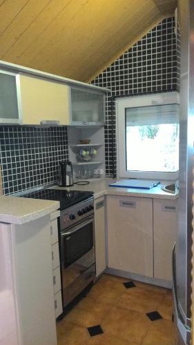 Кухня или мини-кухня в Guest house rjadom s sanatoriem Djulber
