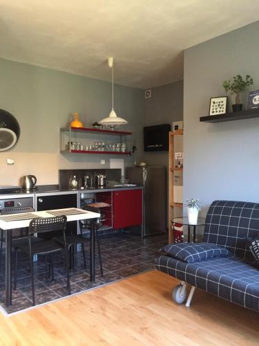 Cuisine ou kitchenette dans l'établissement Apartment Na Hrebenkach