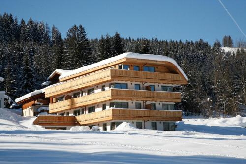 Appartement-Edelweiss during the winter