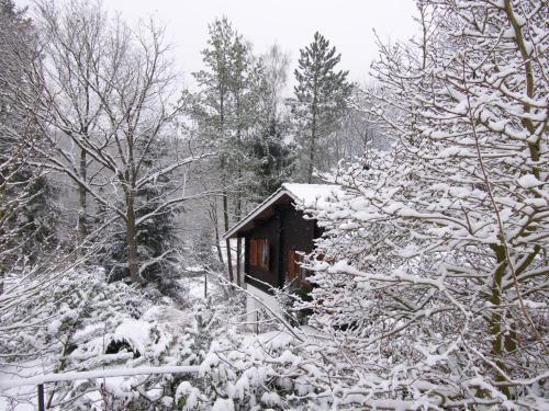 Ferienhaus Taunus I im Winter