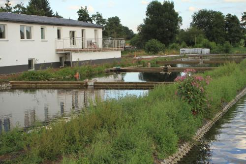 Der Swimmingpool an oder in der Nähe von Ruhige Ferienwohnungen mit Teichblick