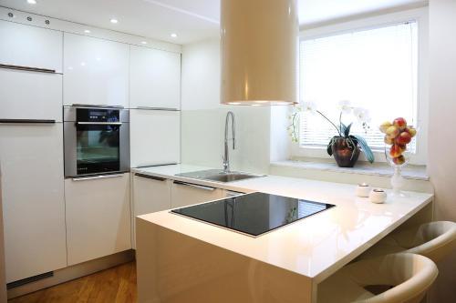 Kuhinja oz. manjša kuhinja v nastanitvi ApartHotel Vila Minka