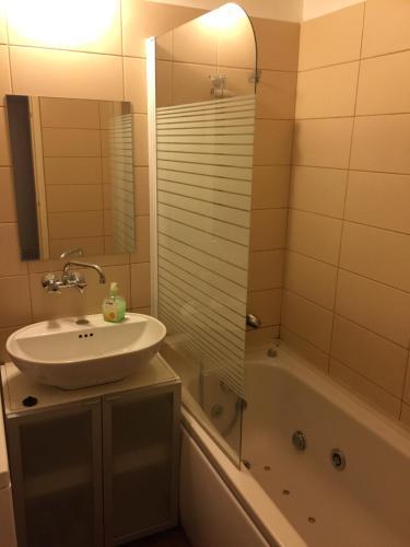 A bathroom at Coronation Apartment