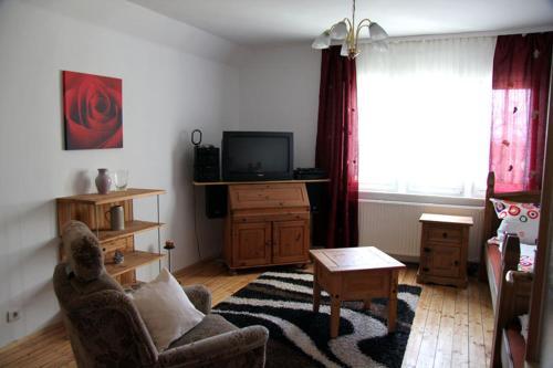 TV/Unterhaltungsangebot in der Unterkunft Apartment in Chemnitz, Ebersdorfer Wald