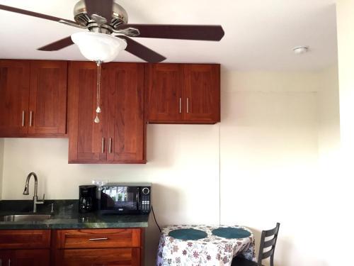 A kitchen or kitchenette at Blue Manoa Studios
