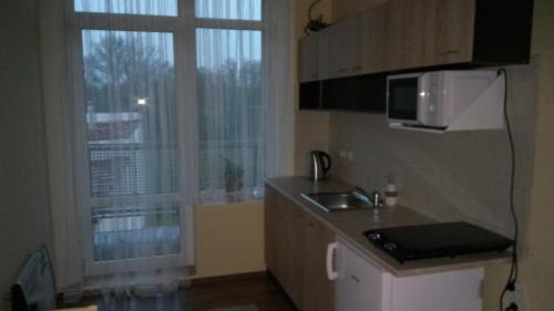 A kitchen or kitchenette at Apartmá Anglická