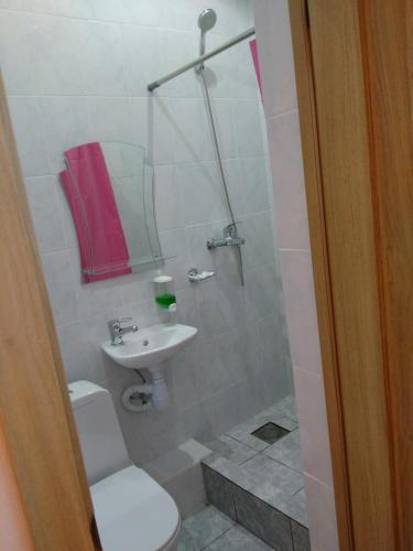 A bathroom at Zvenigorodskaya