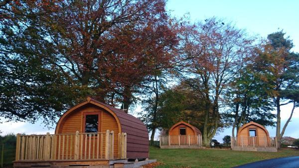 Drumshademuir Caravan & Camping Park in Glamis, Angus, Scotland