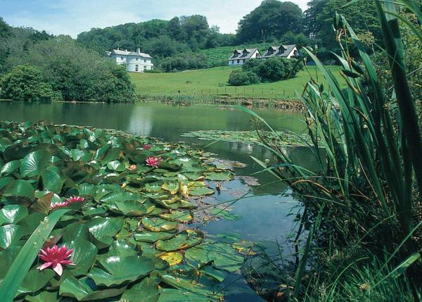 Lakeview in Liskeard, Cornwall, England