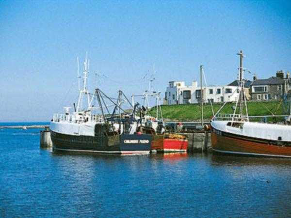 Harbour Heights in Seahouses, Northumberland, England