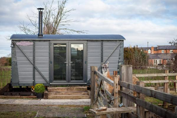 Skipbridge Farm Shepherds Hut in Green Hammerton, North Yorkshire, England
