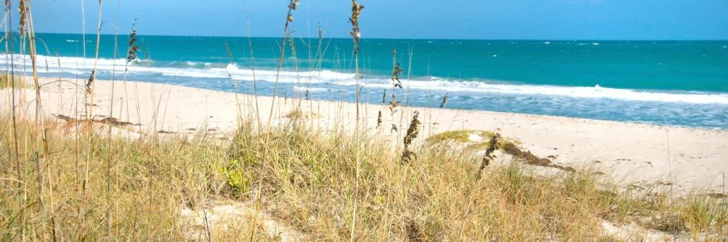 Ormond Beach, FL Vacation Rentals: house rentals & more | Vrbo