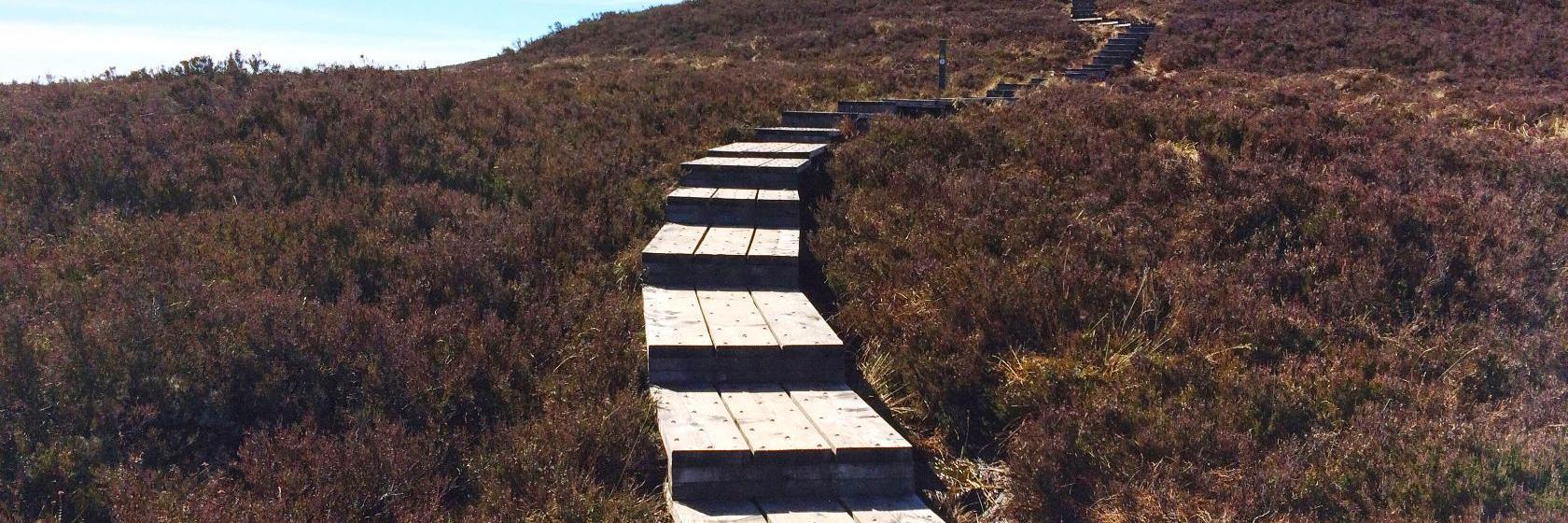 Kilkenny to Portlaoise, Mountmellick Road - 5 ways to travel