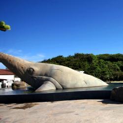 Rio das Ostras 206 ξενοδοχεία