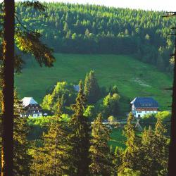 Rinken 3 hotels