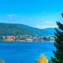 Titisee-Neustadt 3 serviced apartments