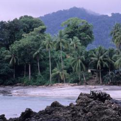 Bahía Solano 25 hoteles