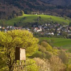 Schönberg 14 hotels